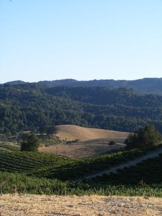 Tablas Creek Winery