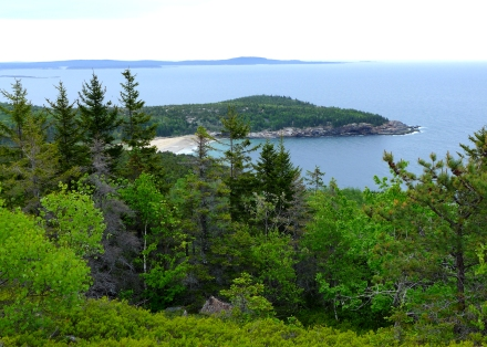 Mt. Gorham in Mount Desert Island, Maine
